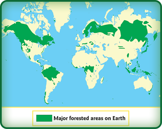 the forest world map Forest Habitats Powerknowledge Life Science
